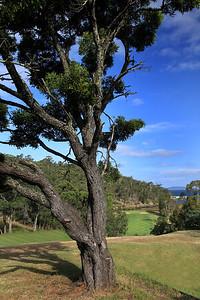 Kingston Beach Golf Club, Tasmania, Australia