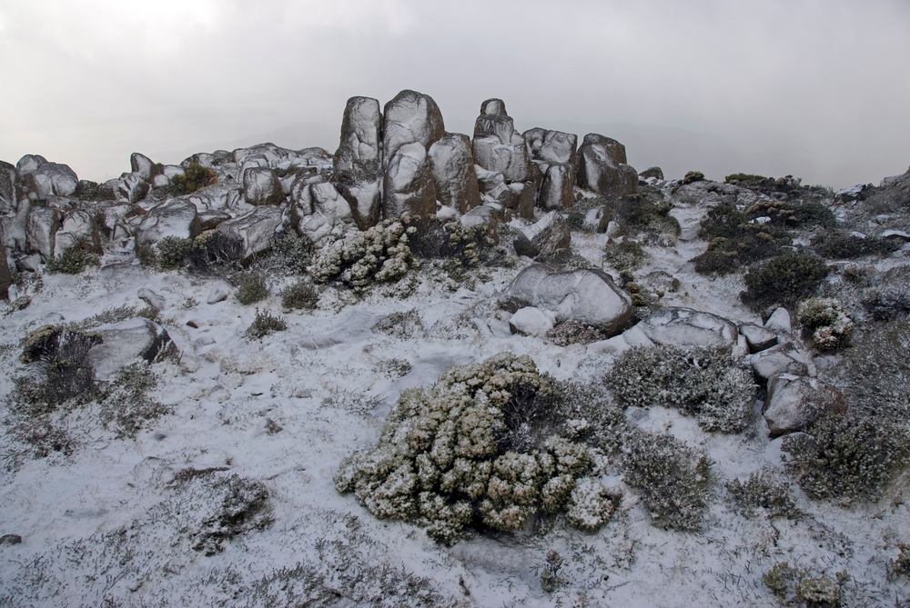 Snowy Rocks Atop Mount Wellington, Tasmania