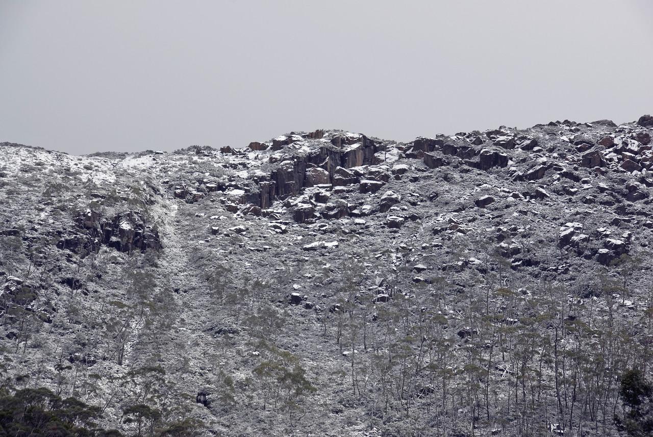 Snow Cover, Mount Field National Park - Tasmania, Australia