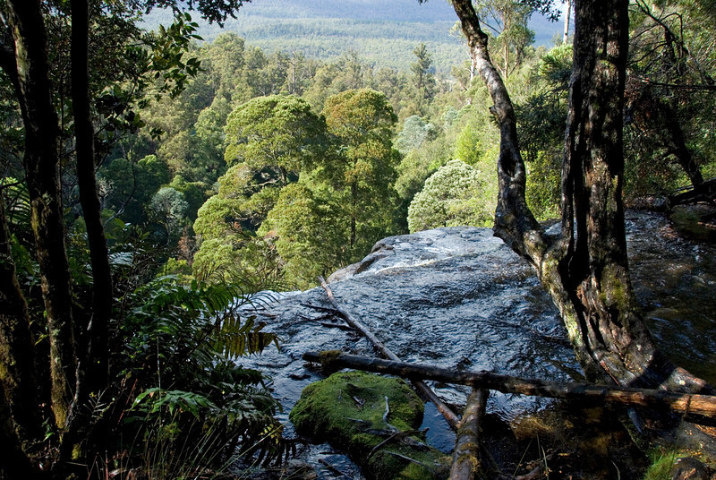 Top of Russell Falls 1, Mount Field National Park - Tasmania, Australia