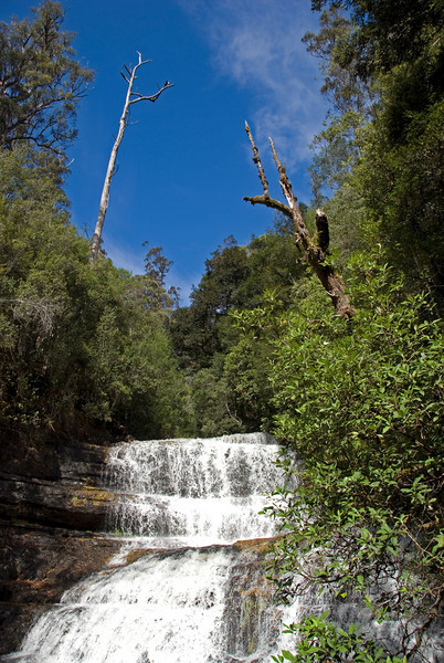 Waterfall 1, Mount Field National Park - Tasmania, Australia