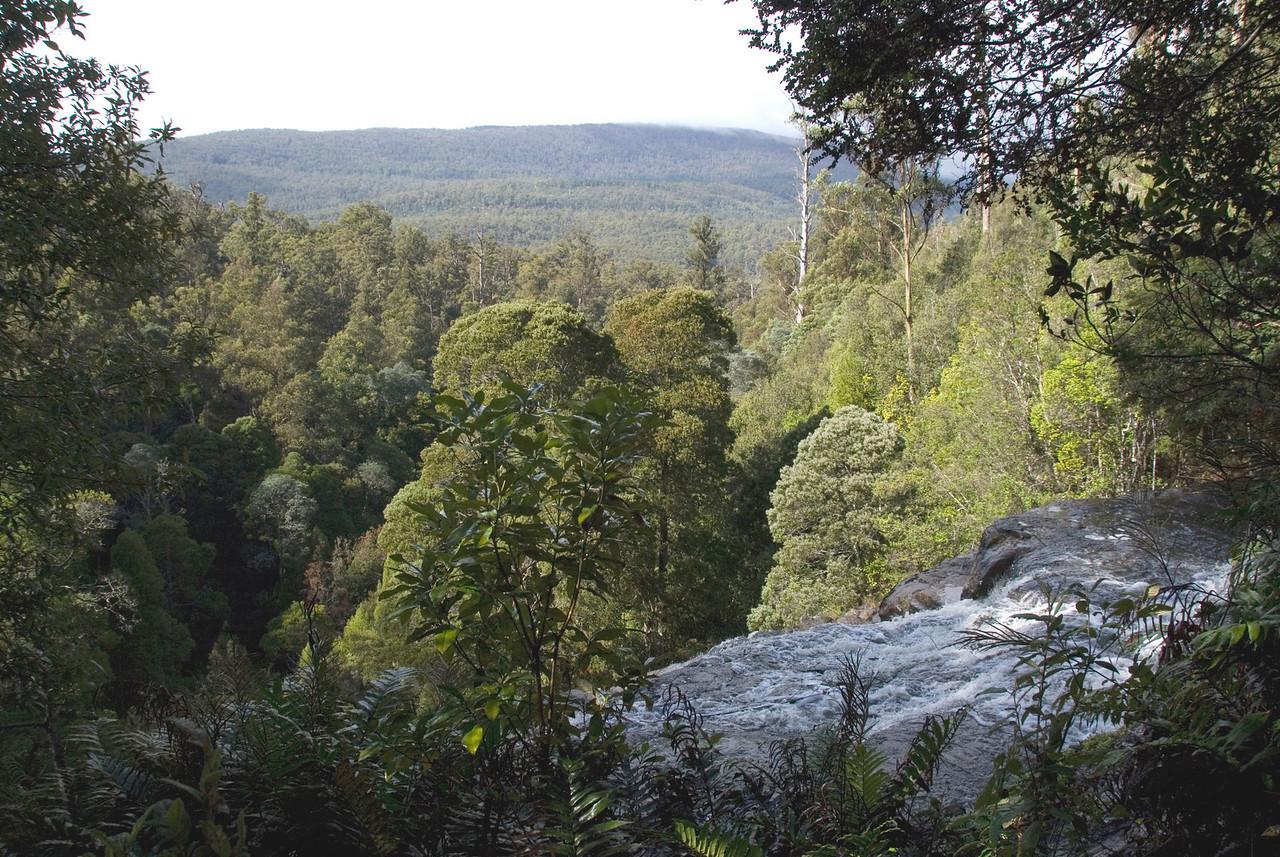 Top of Russell Falls 2, Mount Field National Park - Tasmania, Australia