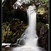 Crater Falls <br /> Cradle Mountain National Park<br /> <br /> Halfway up the path from Ronny Creek to Crater Lake, the stream cascades along steep rocky paths creating continuous falls.<br /> <br /> DM_9217