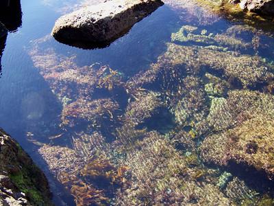 water along the shoreline, Eaglehawk Neck