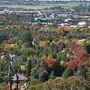 Canberra sokszínű fái<br /> <br /> Canberra's colourful trees