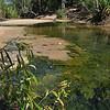 Tjuwaliyn (Douglas) Hot Springs<br /> <br /> Douglas melegvizű forrás