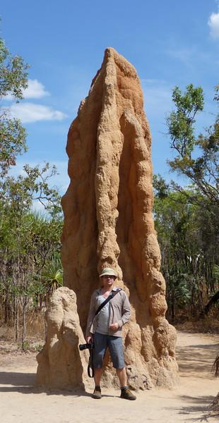 Cathedral termite mound<br /> <br /> Jó nagy termeszvár