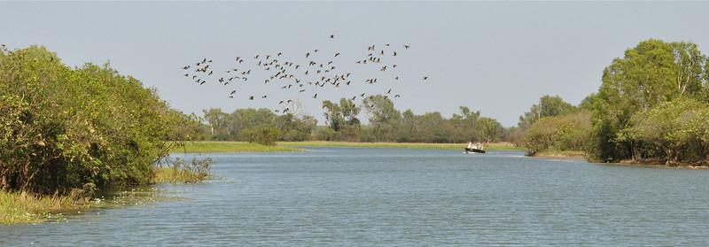Ducks are flying over a fishing boat<br /> <br /> Kacsák szállnak egy pecázó hajó felett