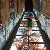 Bones and other remains at Mount Gambier and surrounds.<br /> <br /> Csont és egyéb lenyomat maradványok Mt Gambier és környékén