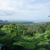 Mount Alexandra lookout<br /> <br /> Alexandra hegy kilátó