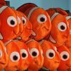 Finding Nemo - Sydney Aquarium<br /> <br /> Némó nyomában - Sydney Akvárium