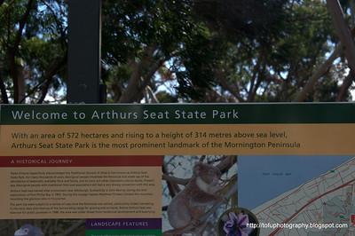 Arthurs Seat - April 2010