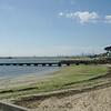 Dog's beach, Cityscape<br /> <br /> Kutyastrand a város látképvel a háttérben