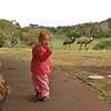 Little girl (Greta) with big emus<br /> <br /> Kis ember nagy madárral