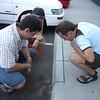 Watching ants<br /> <br /> Hangya lesen