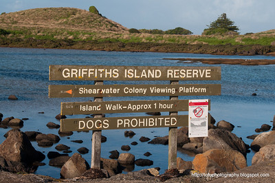 Griffiths Island, Port Fairy pt 1. - June 2011