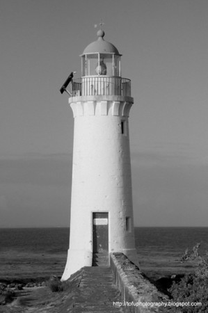 Griffiths Island, Port Fairy pt 2. - June 2011