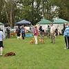 Dog show in Lancefield<br /> <br /> Kutyakiállítás Lancefield-ben