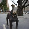 Dog<br /> <br /> Kutya