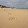 Point Nepean Park<br /> - <br />