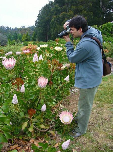 Teki is taking a picture<br /> <br /> Teki fotózik