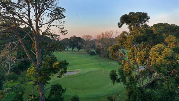 Rossdale_02AerialBackThroughTrees_0400