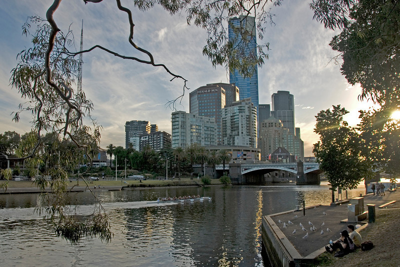 Rowers and Skyline - Melbourne, Victoria, Australia
