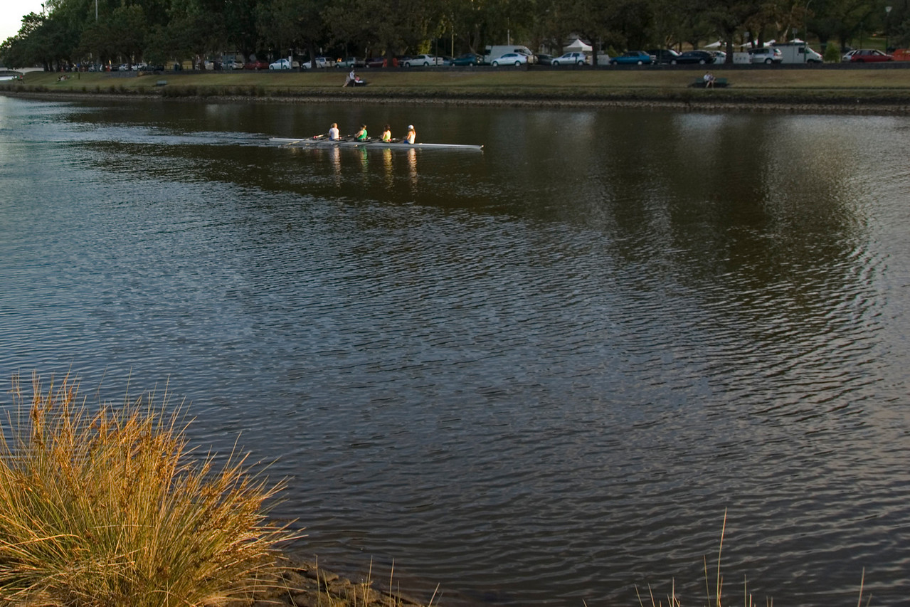 Rowers on Yarra River 3 - Melbourne, Victoria, Australia