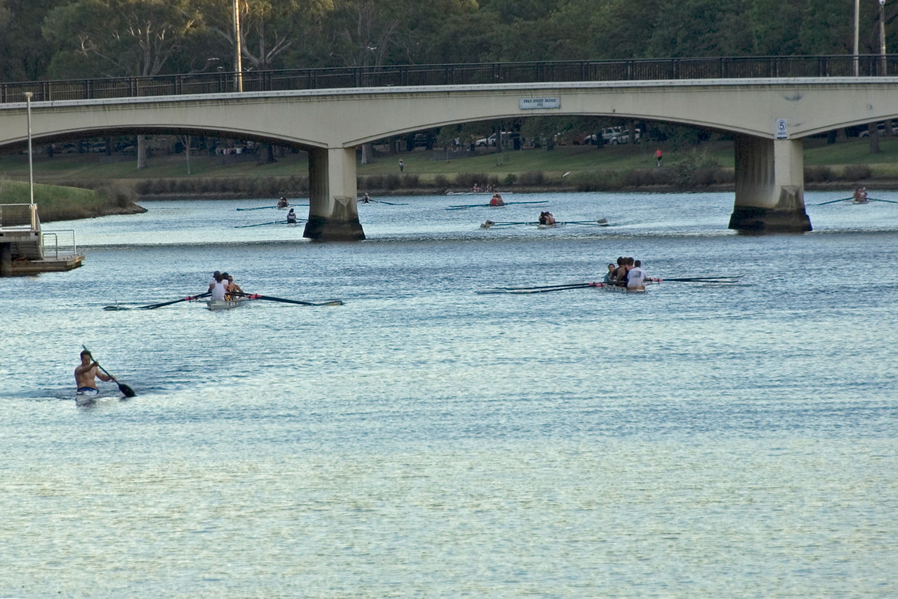 Rowers on Yarra River 2 - Melbourne, Victoria, Australia