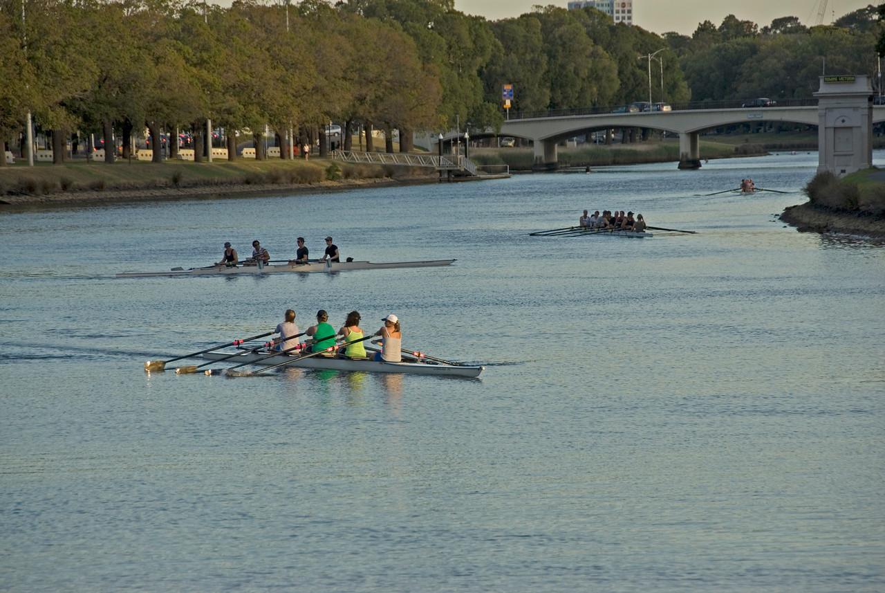 Rowers on Yarra River 4 - Melbourne, Victoria, Australia