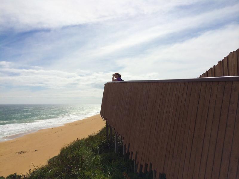 Logan Beach - Warnambool