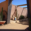 Cactus Country - awsome place to visit<br /> <br /> Kaktusz Világ - nagy jó kis kaktusz kert