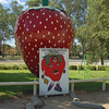 The Big Strawberry<br /> <br /> A Nagy Eper