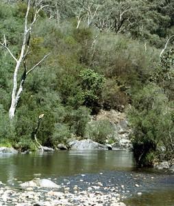 Goobragandra 1991