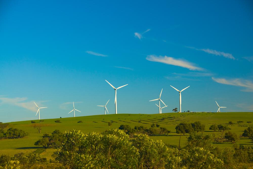 Windmills in Western Australia