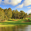 Lake Karrinyup_08TeePano_5875
