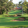 Lake Karrinyup_08GreenWaterVert_5871