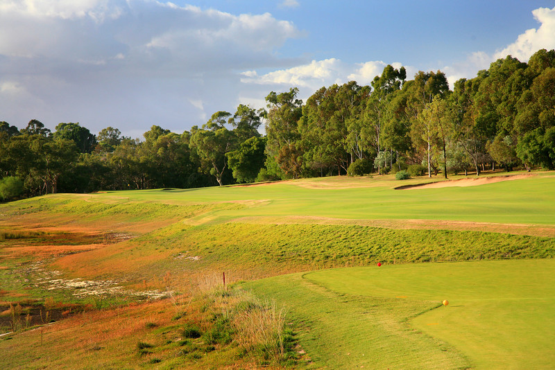 Lake Karrinyup_03TeeClose_5885