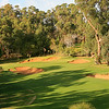 Lake Karrinyup_01TeeVert_5906