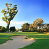 Lake Karrinyup_14ApproachVert_5770
