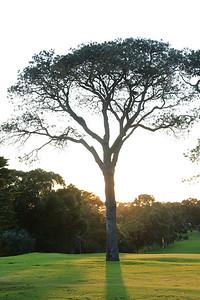 Royal Fremantle Golf Club, Western Australia, Australia