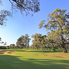 RoyalFremantle_03TreeWide_4694