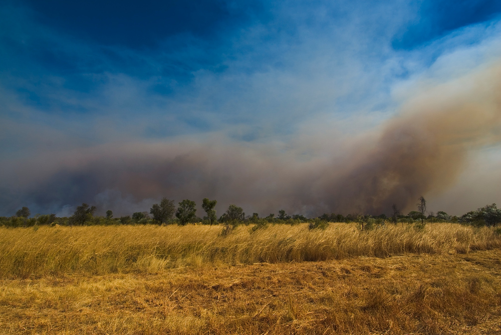 Bush Fire in the Kimberly Region of Western Australia