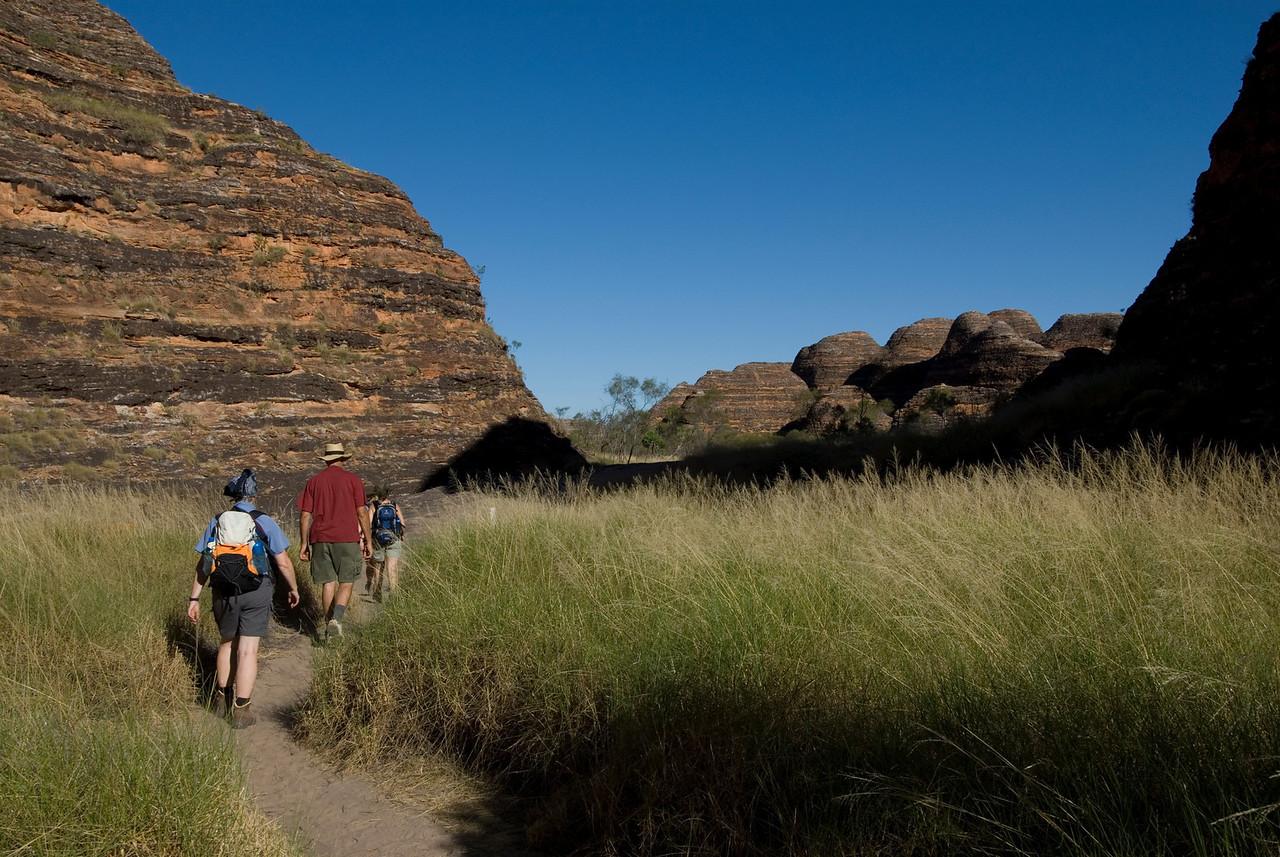 Trail Through Bee Hive Domes, Purnululu National Park - Western Australia