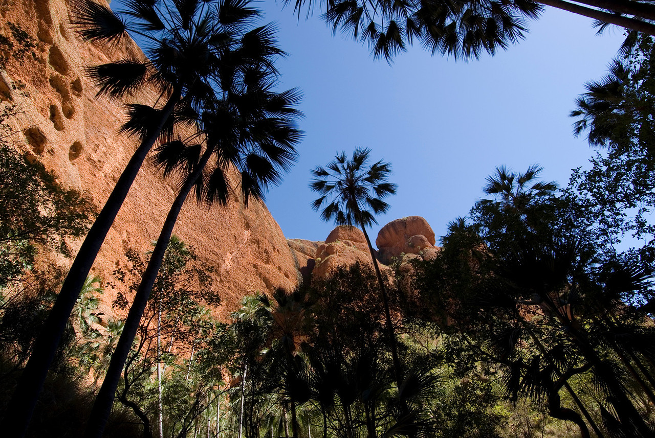 Echnida Chasm 5, Purnululu National Park - Western Australia