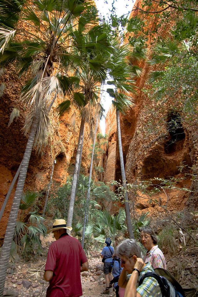 Echnida Chasm Entrance 5, Purnululu National Park - Western Australia