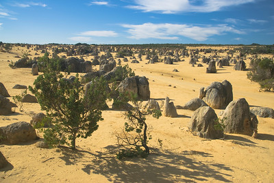 Pinnacle Desert 5 - Western Australia