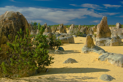 Pinnacle Desert 8 - Western Australia
