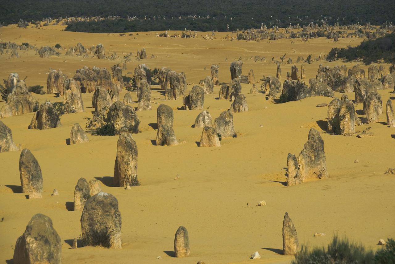 Pinnacle Desert 3 - Western Australia