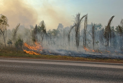 Brush Fire 1 - Kimberly Region, Western Australia
